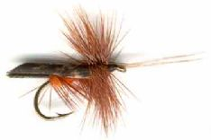 Dark Brown Horned Caddis Dry Flies
